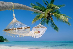 Beach and Hammock