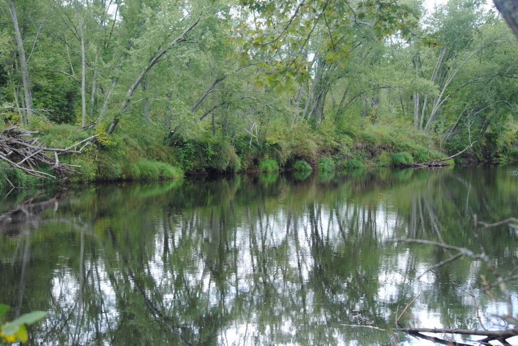 Kettle River Reflection