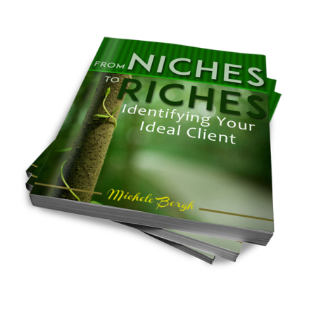 Niches to Riches eBook by Michele Bergh